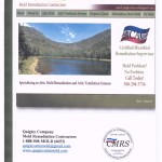 Mold Brochure Cover