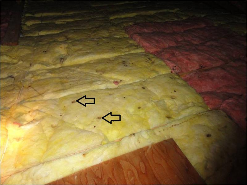 Condensation drip marks