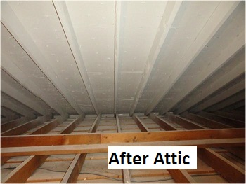 Before And After Quigley Mold Remediation Contractors