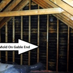Mold at gable end