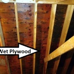 Wet Plywood