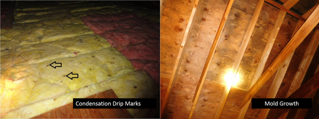 Condsensation versus Mold
