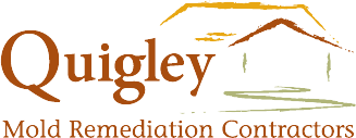 Quigley Mold Remediation